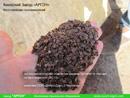 Экспериментальное отделение шелухи Гречихи от мусора